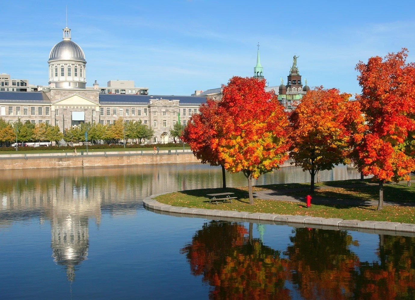 Trip Ideas outdoor tree sky water reflection season autumn plant leaf flower woody plant Nature park cityscape Lake Garden surrounded