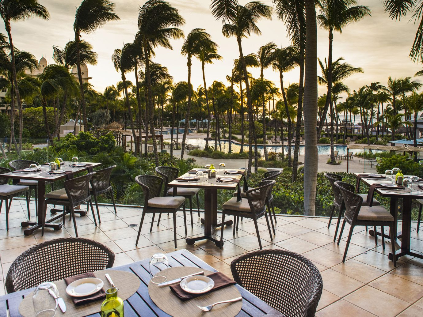 Aruba caribbean Hotels tree outdoor water chair property Resort restaurant vacation estate palm real estate condominium Pool lined furniture several dining table