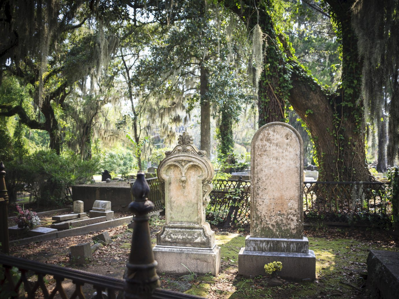 Trip Ideas Weekend Getaways tree outdoor cemetery park grave building plant shrine