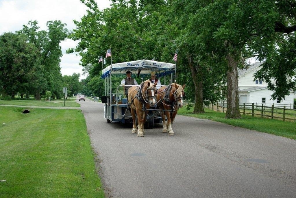 Trip Ideas tree outdoor grass road sky transport park horse-drawn vehicle