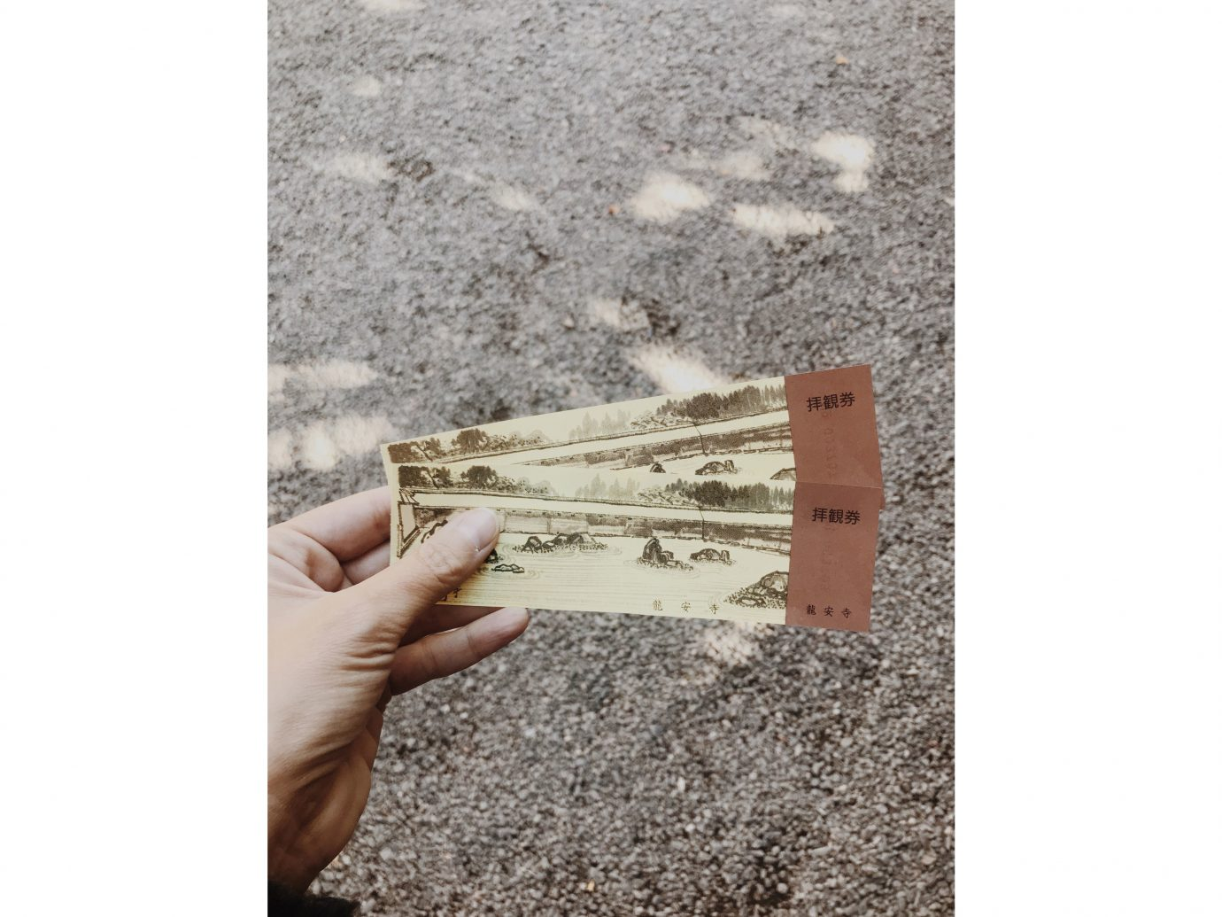 Influencers + Tastemakers Japan Photo Diary Tokyo wood floor angle beige flooring