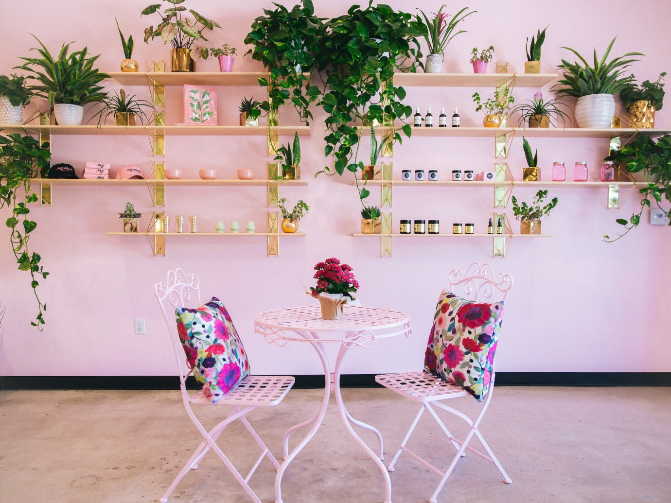 Jetsetter Guides indoor floor pink flower plant furniture floristry table flower arranging Living room flowerpot interior design floral design chair decorated arranged