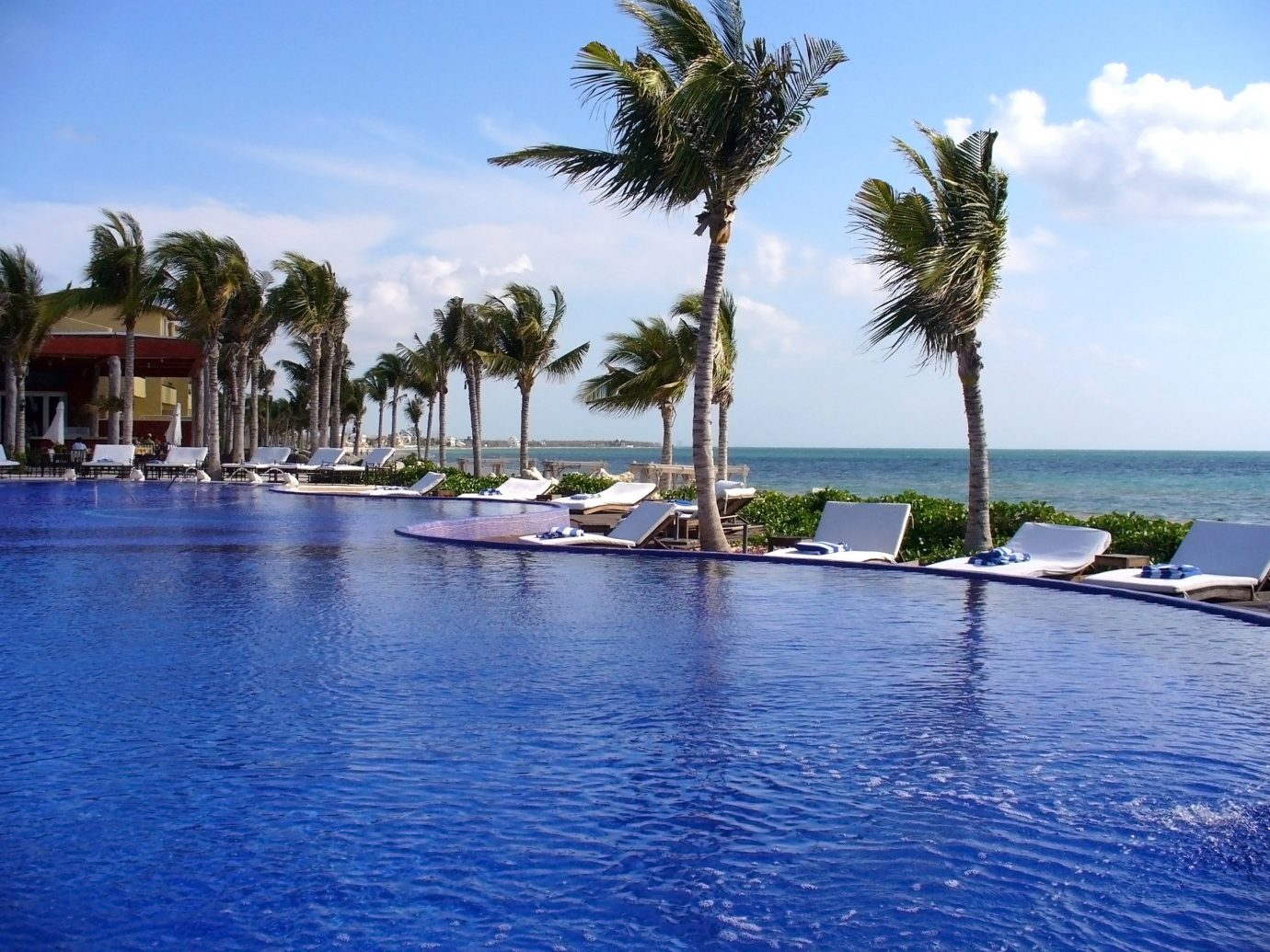 Beachfront Hotels Lounge Luxury Ocean Pool sky outdoor water tree marina palm Resort Sea vacation arecales dock bay Nature Lagoon Beach swimming pool Coast estate swimming shore lined Island surrounded