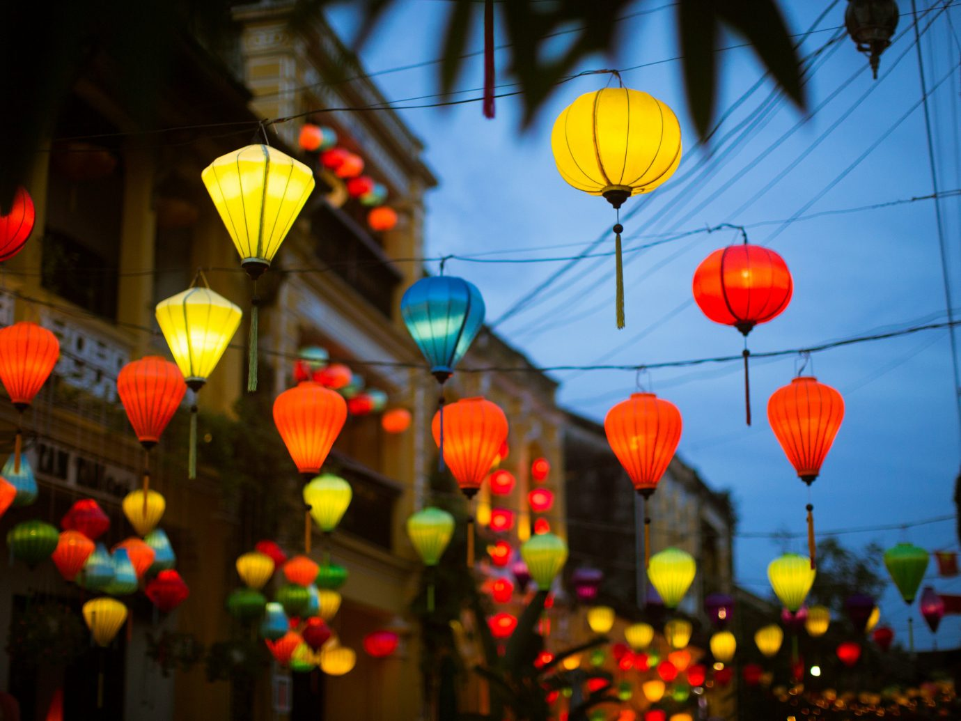 color red crowd flower light night toy balloon lighting festival mid autumn festival colorful several