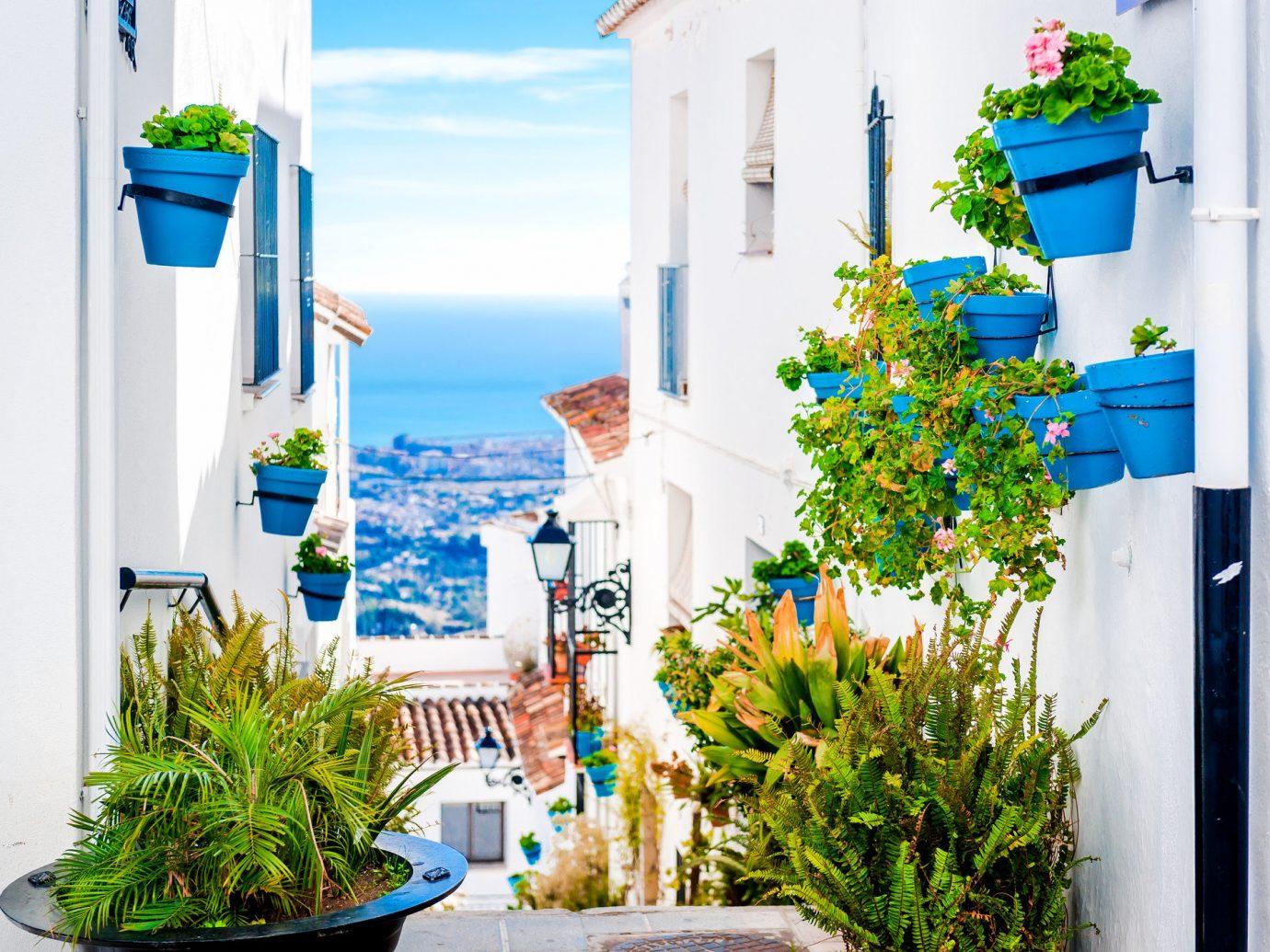 Road Trips Trip Ideas plant blue home flower house Balcony facade interior design apartment porch