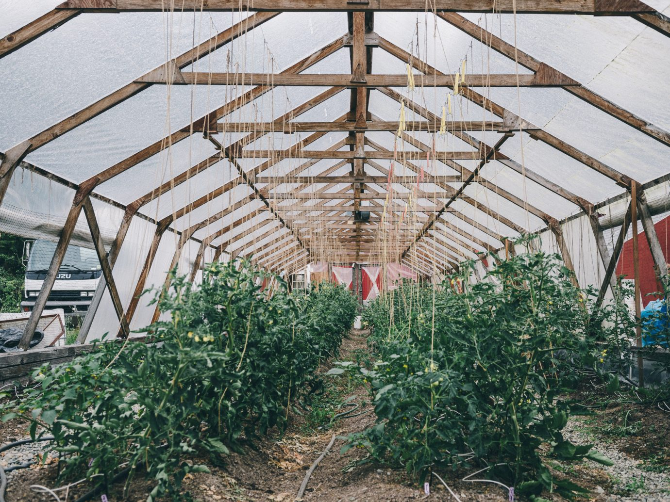Food + Drink outdoor man made object greenhouse outdoor structure agriculture tool Farm Garden