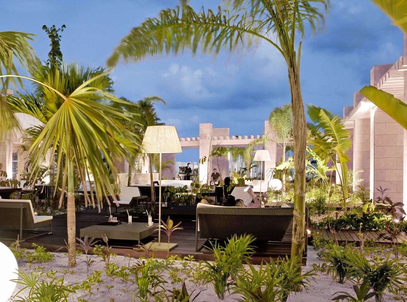 Hotels tree palm plant outdoor Resort vacation arecales estate Garden condominium real estate restaurant palm family flower hacienda decorated furniture
