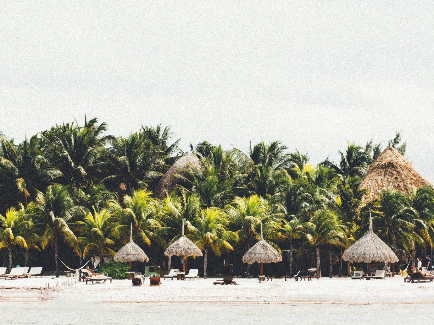 Honeymoon Hotels Mexico Romance Tulum tree outdoor arecales palm tree Beach plant vacation tourism sky date palm water tropics day