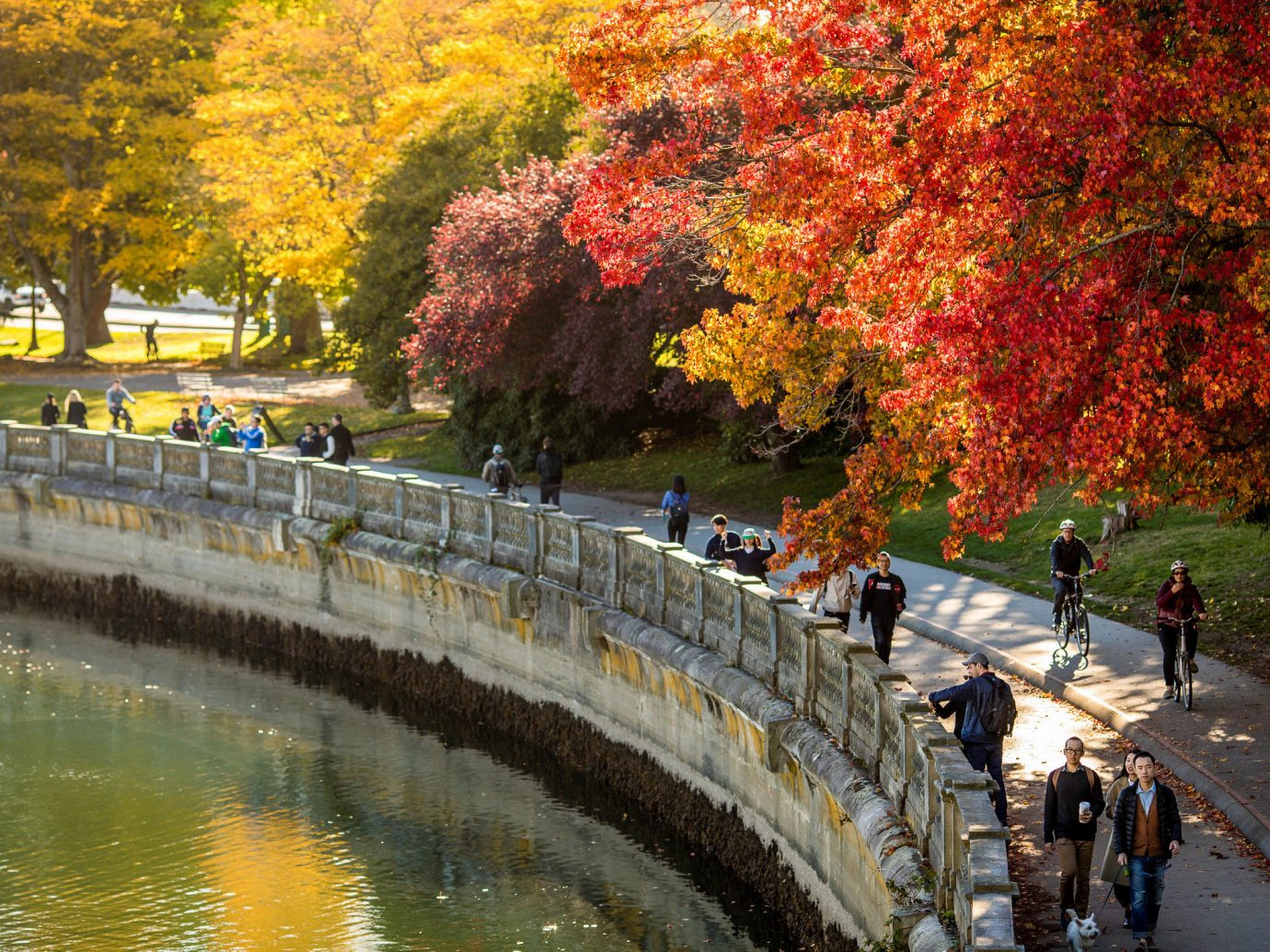 Trip Ideas tree outdoor water plant leaf waterway Nature autumn woody plant reflection River Canal spring bank landscape maple tree pond recreation branch deciduous leisure maidenhair tree traveling