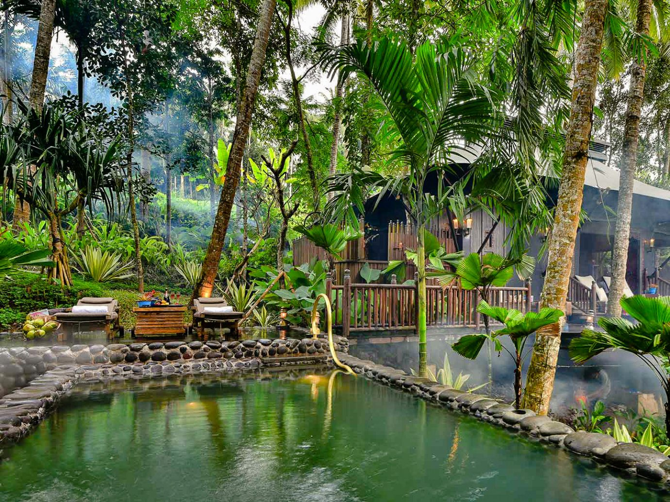 Health + Wellness Hotels Spring Trips Trip Ideas vegetation plant arecales water Resort tree palm tree outdoor structure reflection real estate leisure pond Jungle rainforest landscape botanical garden estate bayou reflecting pool
