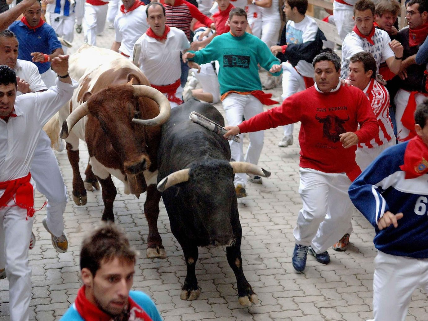 Offbeat person ground bull sports bullfighting cattle like mammal animal sports mammal equestrian sport tradition jockey rodeo festival bovine crowd