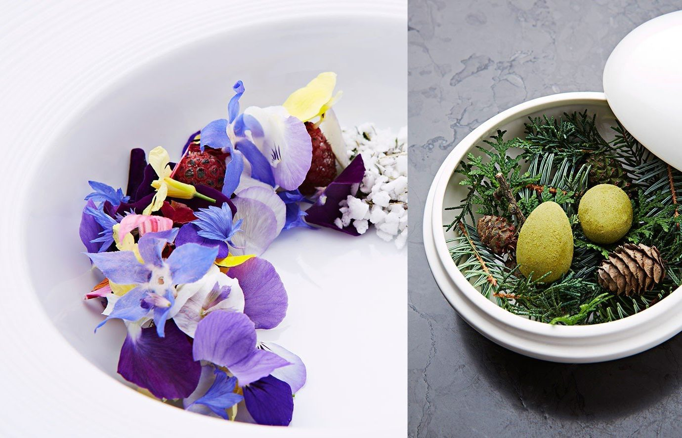 Food + Drink plate flower plant food produce dishware
