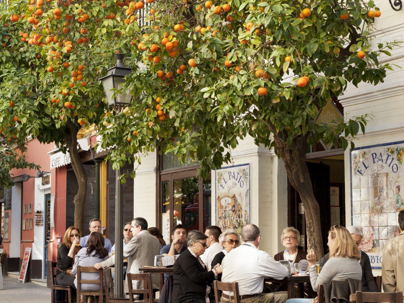 Trip Ideas outdoor tree neighbourhood flower restaurant Courtyard way sidewalk