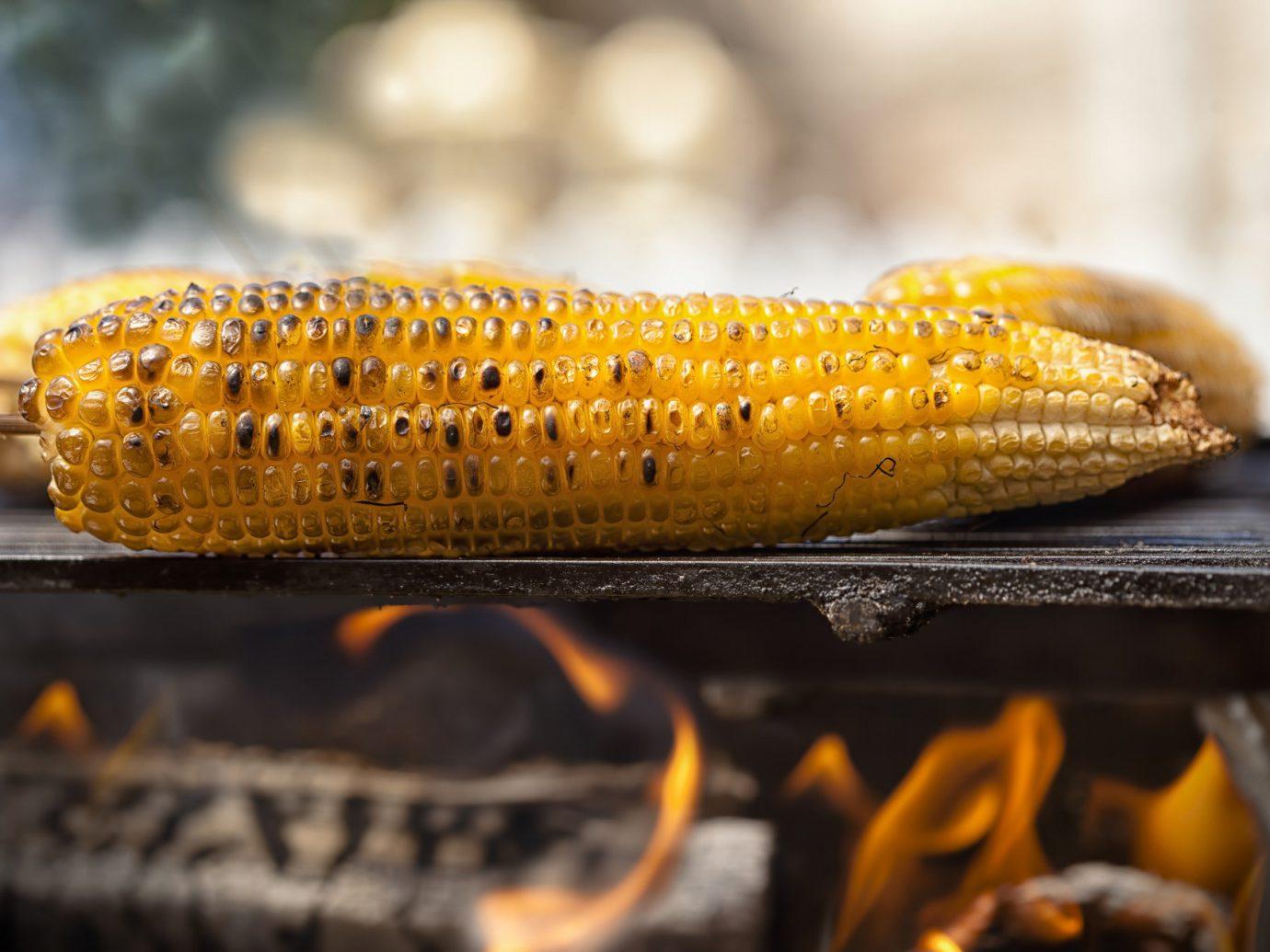 Food + Drink corn on the cob indoor food yellow macro photography produce cuisine snack food corn