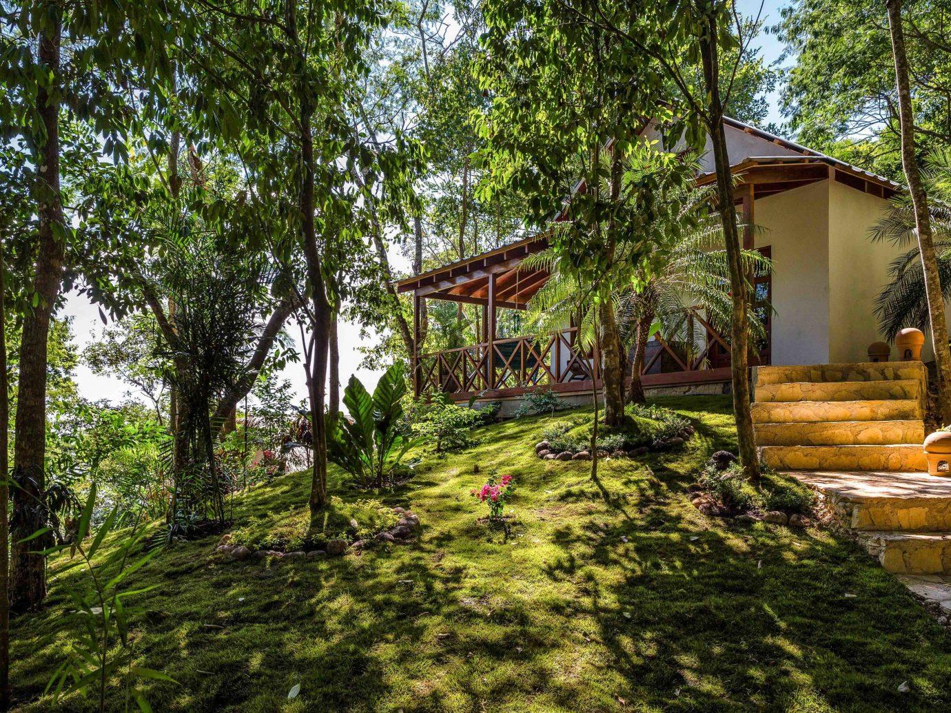 Celebs Hotels tree outdoor grass property cottage Resort real estate estate house plant home Jungle landscape outdoor structure rainforest plantation eco hotel area lush