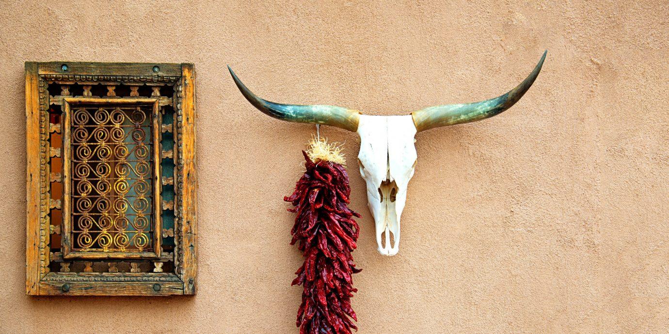 Travel Tips Trip Ideas wall art horn antler jewellery material