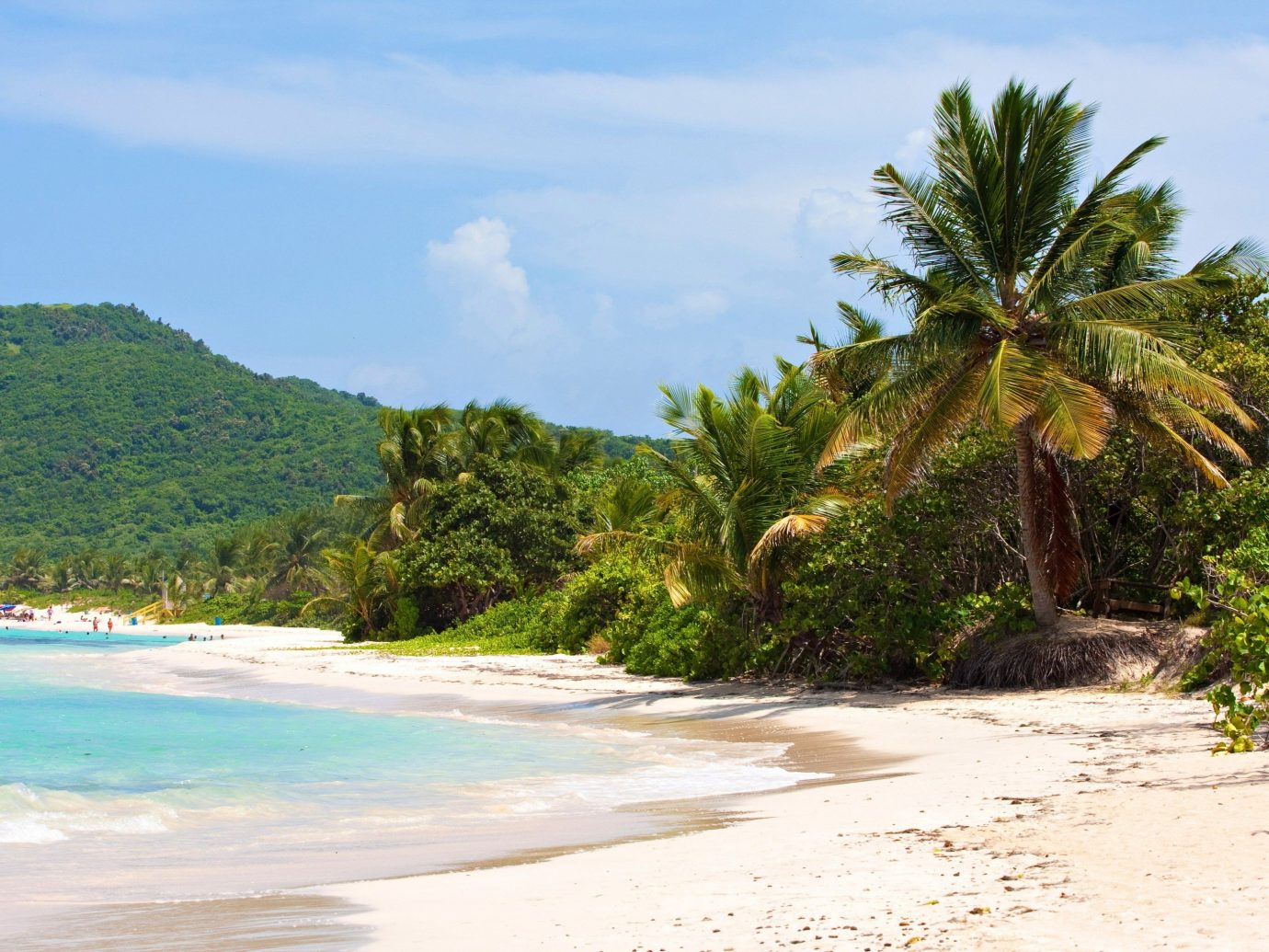 Trip Ideas outdoor sky tree Nature Beach landform geographical feature body of water Coast shore Sea vacation caribbean tropics Ocean arecales bay Island palm family Lagoon cape sandy