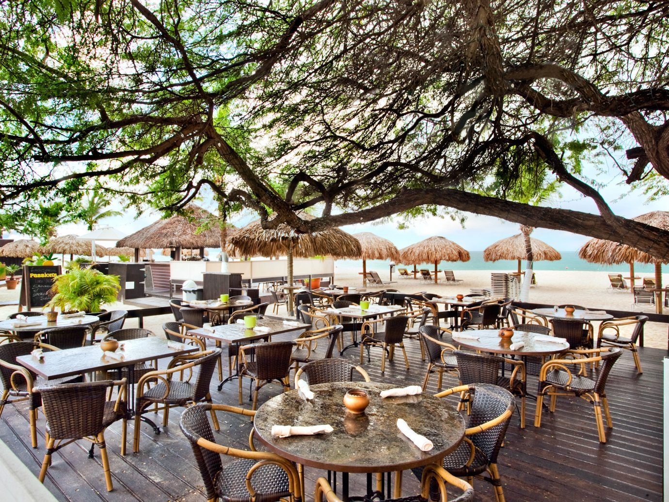 Dining Grounds Hotels Outdoors Patio Resort Romance tree outdoor chair restaurant estate flower meal lined several