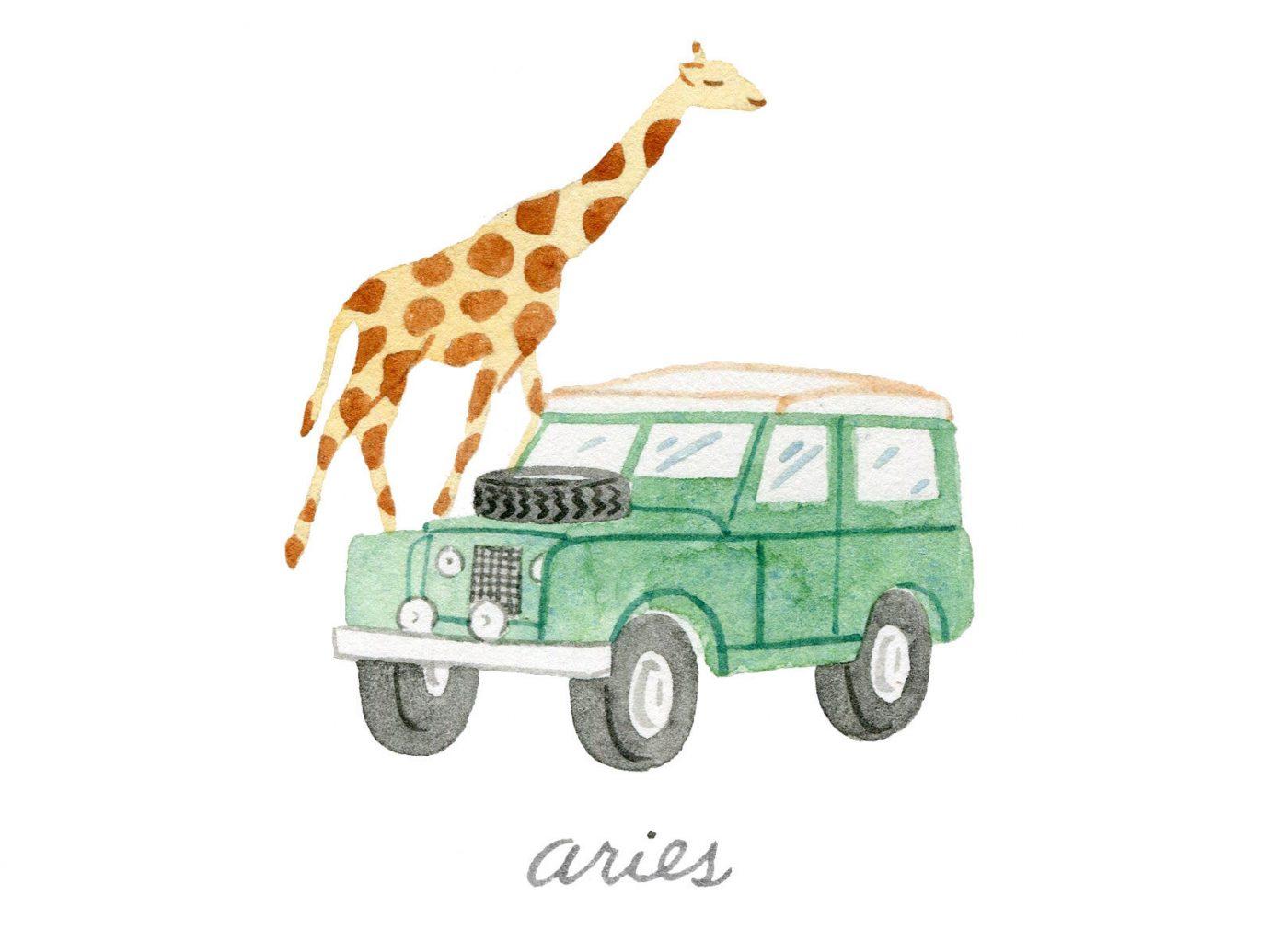 Style + Design transport model car illustration toy