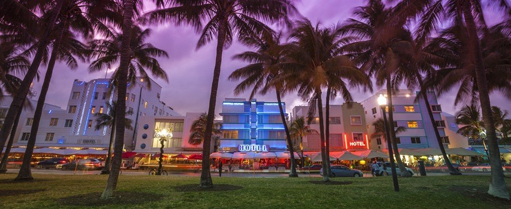 Jetsetter Guides tree grass outdoor palm plant Town City night human settlement plaza cityscape Resort arecales evening