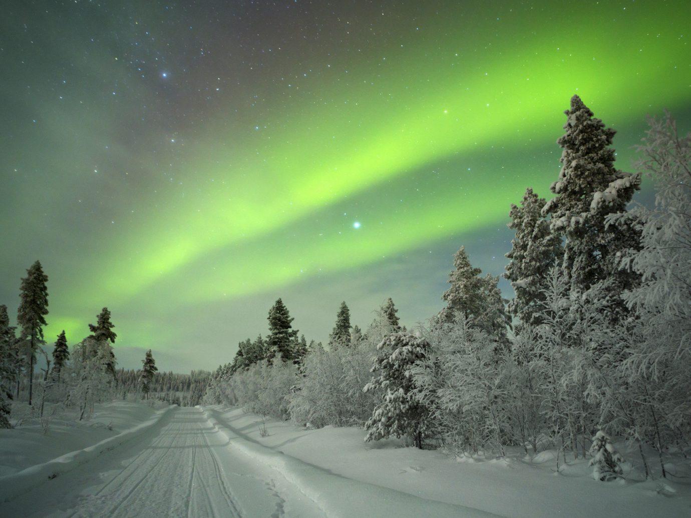 Trip Ideas outdoor tree aurora weather Nature atmosphere snow Night Sky