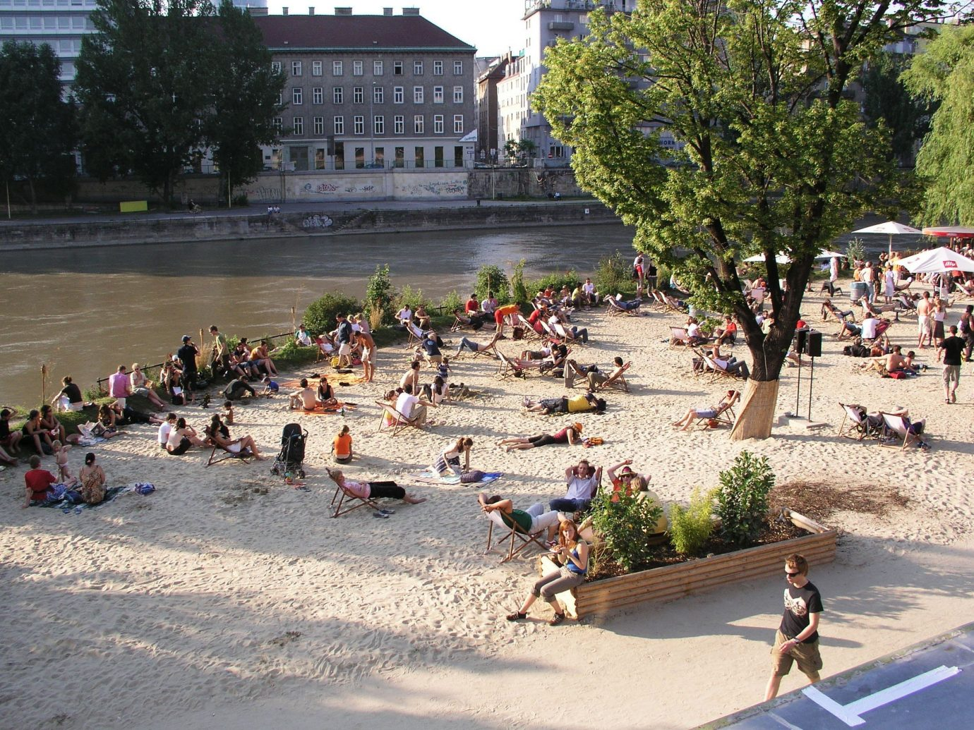 Trip Ideas outdoor tree people town square plaza group tourism walkway shore cement several