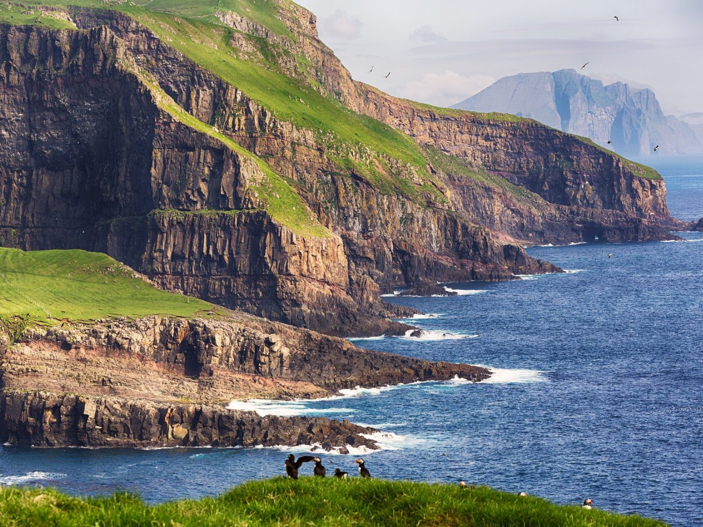 Offbeat mountain water outdoor Nature grass Coast cliff geographical feature landform Sea rock body of water fjord Lake animal terrain bay River Ocean vacation cape loch landscape cove islet hillside pond surrounded