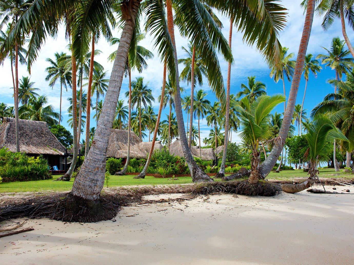 Beach at Jean-Michel Cousteau Resort, Fiji