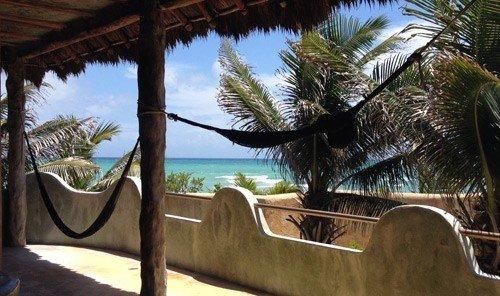 Travel Tips tree outdoor property Resort vacation estate Villa arecales hacienda home plant Jungle palm area shade