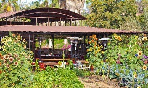 Food + Drink tree outdoor building Resort outdoor structure real estate cottage Garden eco hotel plant