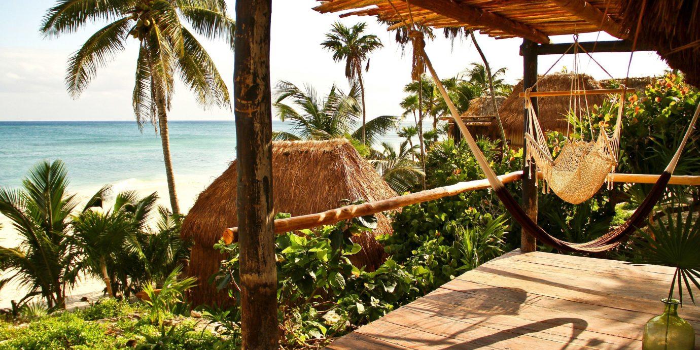 Hotels Outdoors + Adventure tree outdoor sky Resort palm vacation arecales estate tropics Jungle palm family Villa plant shade