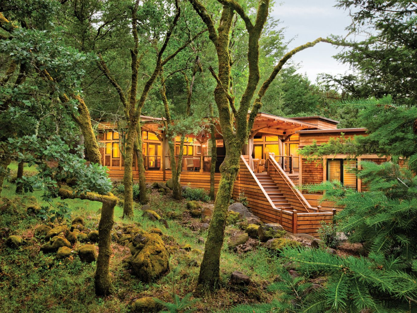 Eco Exterior Food + Drink Health + Wellness Hotels Luxury Outdoors Ranch Romance Romantic Rustic Spa Retreats Trip Ideas Wellness tree outdoor grass park Forest plant Jungle rural area log cabin woodland hut Garden outdoor structure rainforest lush area wood wooded surrounded shade