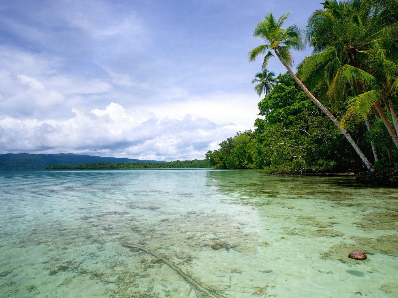 Islands Trip Ideas outdoor sky water tropics body of water Sea coastal and oceanic landforms shore vegetation Ocean Coast arecales palm tree Beach tree cloud caribbean Island Lagoon bay water resources Nature vacation islet landscape Jungle tourism River bank sandy day