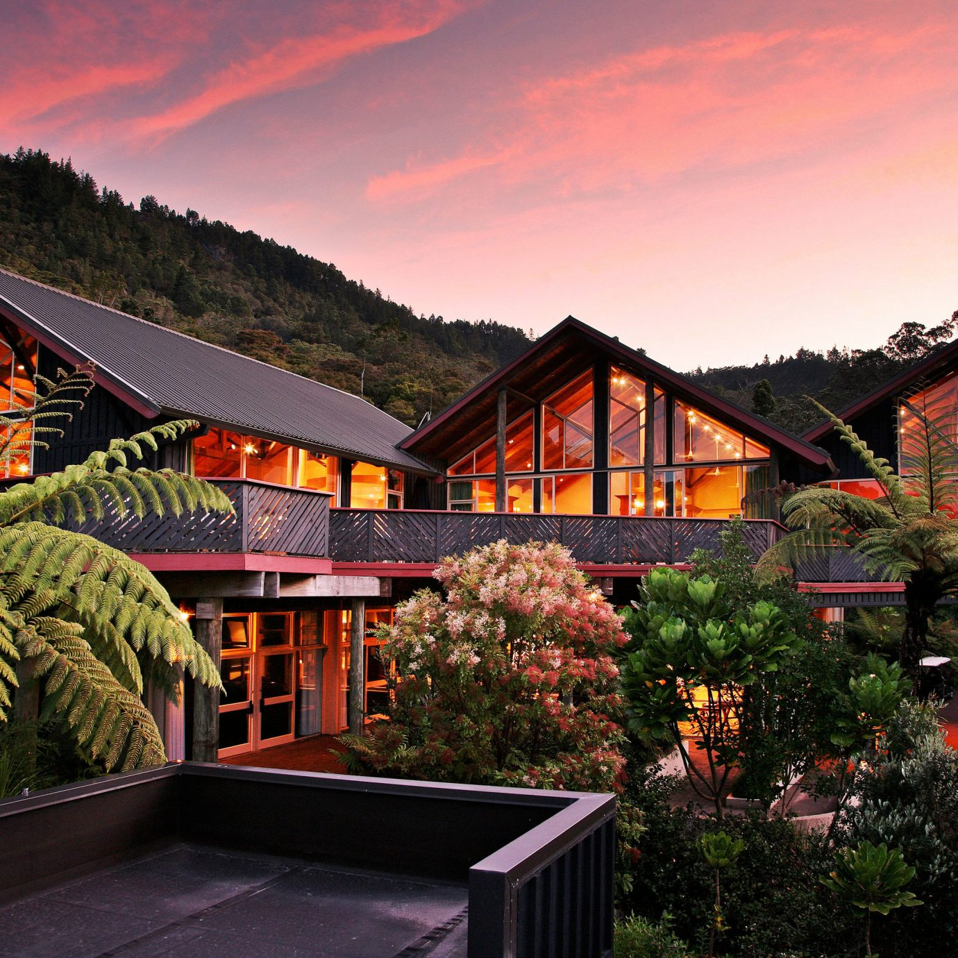 tree house Resort home evening flower