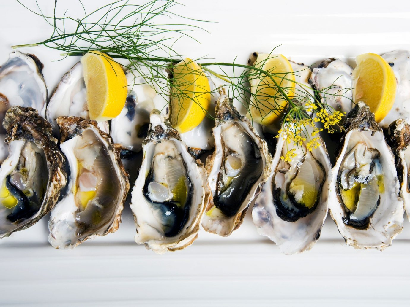 Food + Drink Travel Tips food yellow Seafood invertebrate mussel fish oyster animal source foods clams oysters mussels and scallops several