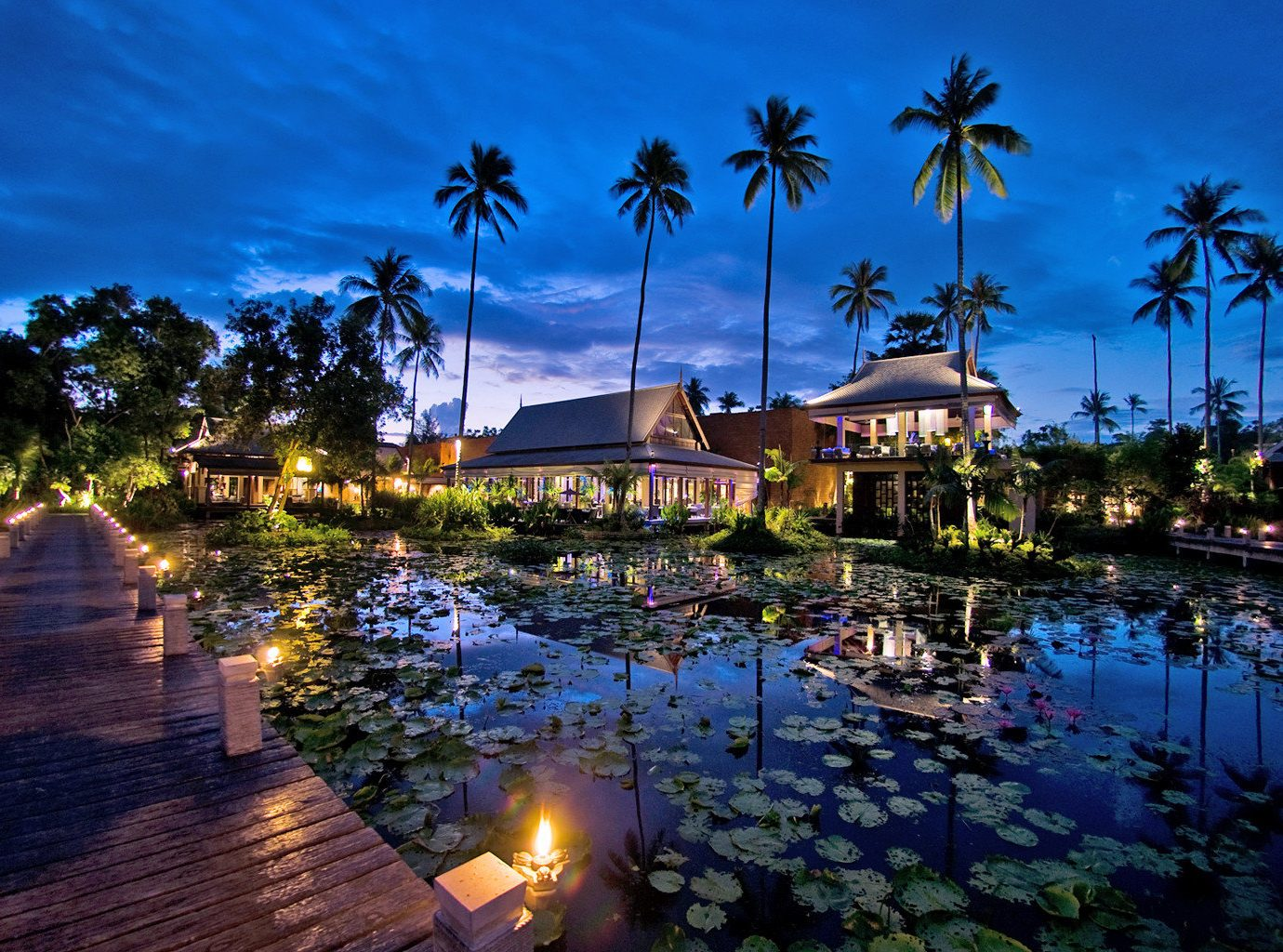 Hotels outdoor tree sky Resort estate swimming pool evening reflection dusk arecales light night several
