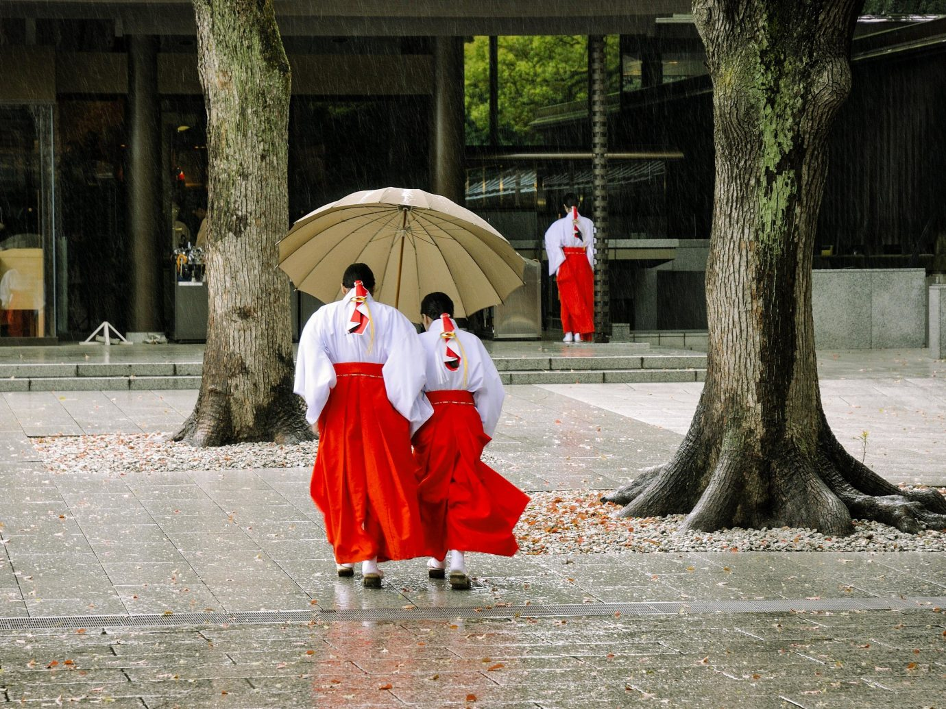Trip Ideas outdoor ground red street temple dress tradition recreation tree girl fun monk coat