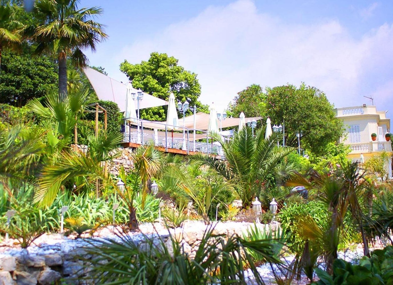 Road Trips Trip Ideas tree outdoor vegetation property arecales plant palm tree Resort real estate home estate sky house Villa water tropics landscaping landscape outdoor structure leisure Garden botanical garden cottage palm