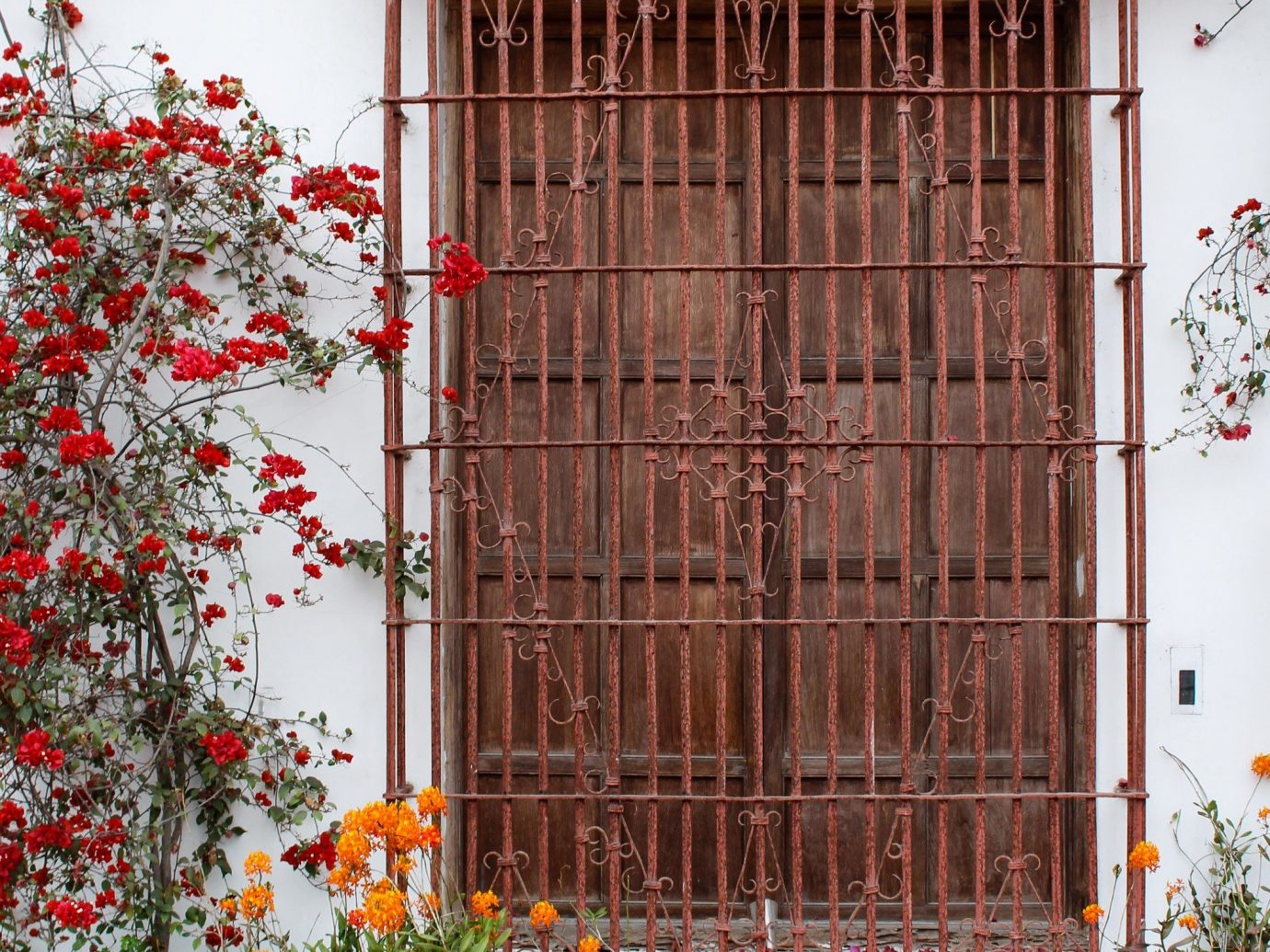 Travel Tips flower plant building window house door Architecture wall gate facade home outdoor structure tree decorated Garden