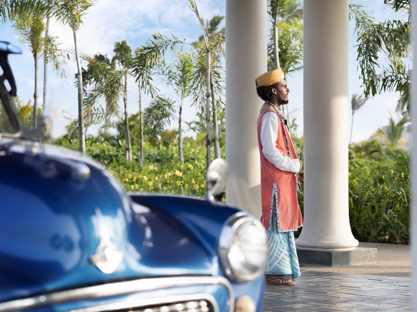 Trip Ideas tree sky outdoor car vehicle luxury vehicle