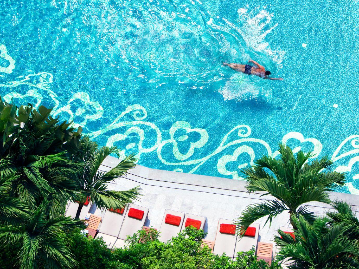 City Cultural Elegant Hotels Patio Pool Tropical Waterfront tree swimming pool plant Jungle ocean floor