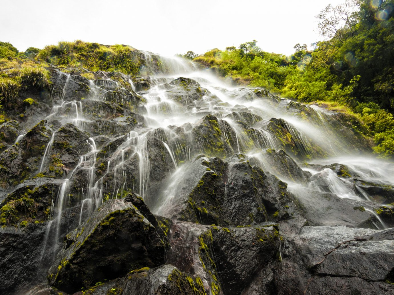Trip Ideas Nature Waterfall water tree outdoor body of water watercourse water feature stream River rock Forest wasserfall rainforest Jungle rapid