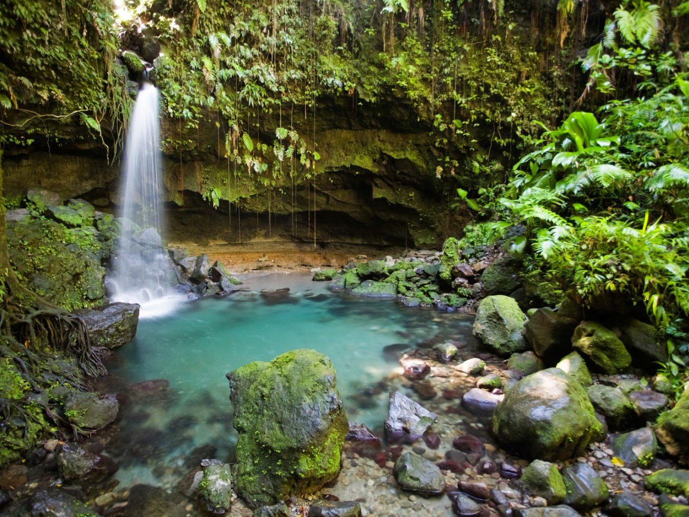 Health + Wellness Trip Ideas outdoor habitat Nature Waterfall water vegetation body of water green watercourse stream rock botany rainforest water feature Forest River Jungle woodland old growth forest area surrounded