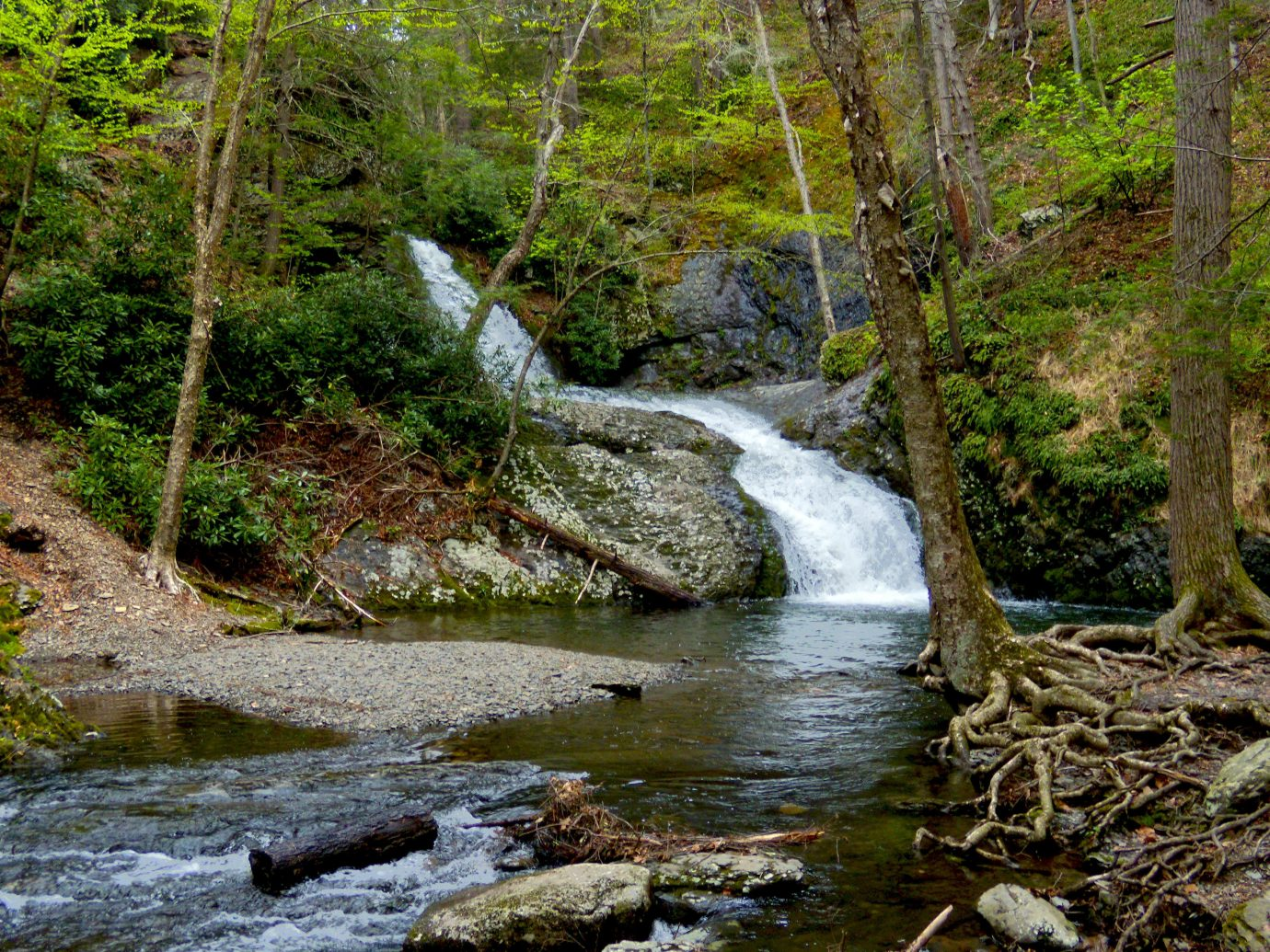 Trip Ideas Weekend Getaways tree outdoor habitat creek Nature Waterfall stream body of water River wilderness geographical feature water natural environment watercourse Forest water feature woodland rainforest rapid rock ravine autumn Jungle surrounded wooded