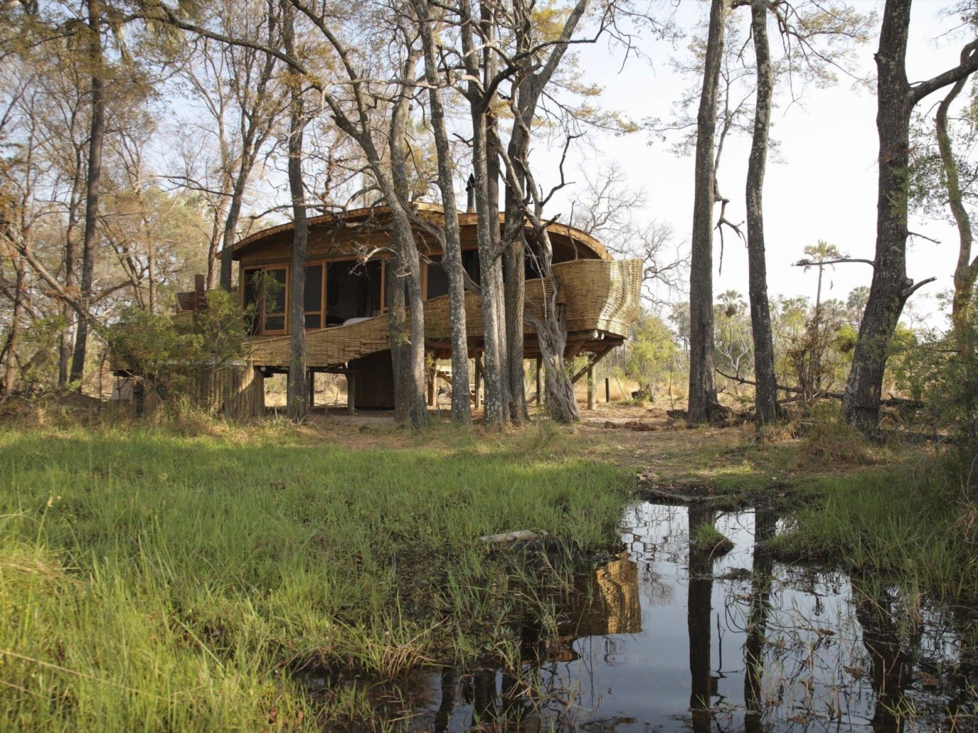 All-Inclusive Resorts Hotels Luxury Travel tree grass outdoor nature reserve standing hut house Safari bayou cottage wetland outdoor structure shack Wildlife area
