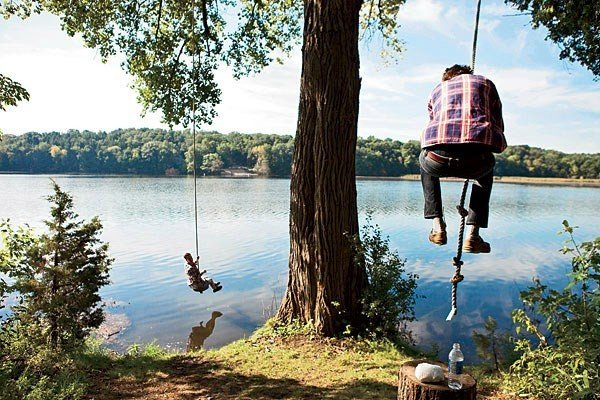 Offbeat tree outdoor water sky body of water vacation Lake Sea bay plant
