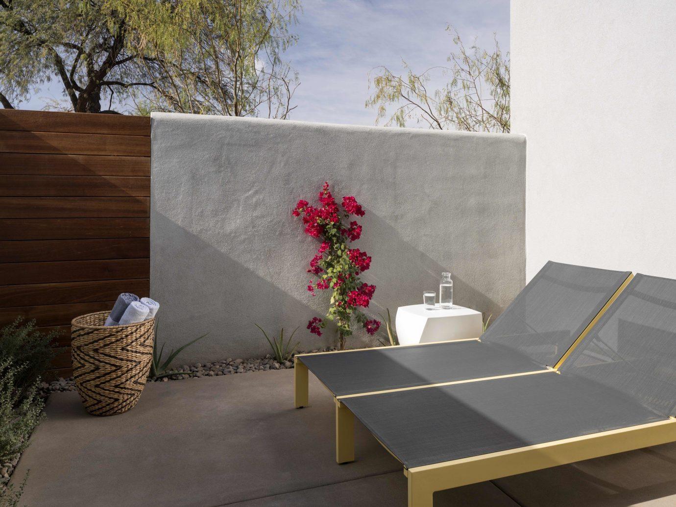 Food + Drink tree property room wall furniture interior design home living room wood Design