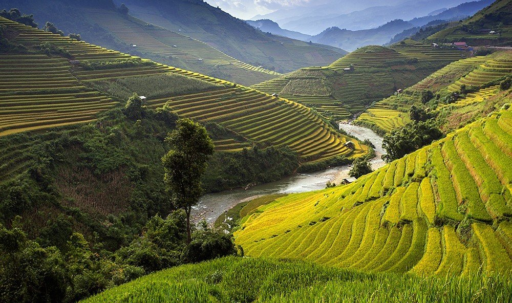 Jetsetter Guides grass highland mountain outdoor mountainous landforms agriculture Terrace geographical feature landform green field hill Nature valley grassland landscape mountain range rural area paddy field plantation plateau aerial photography grassy mountain pass lush flower hillside