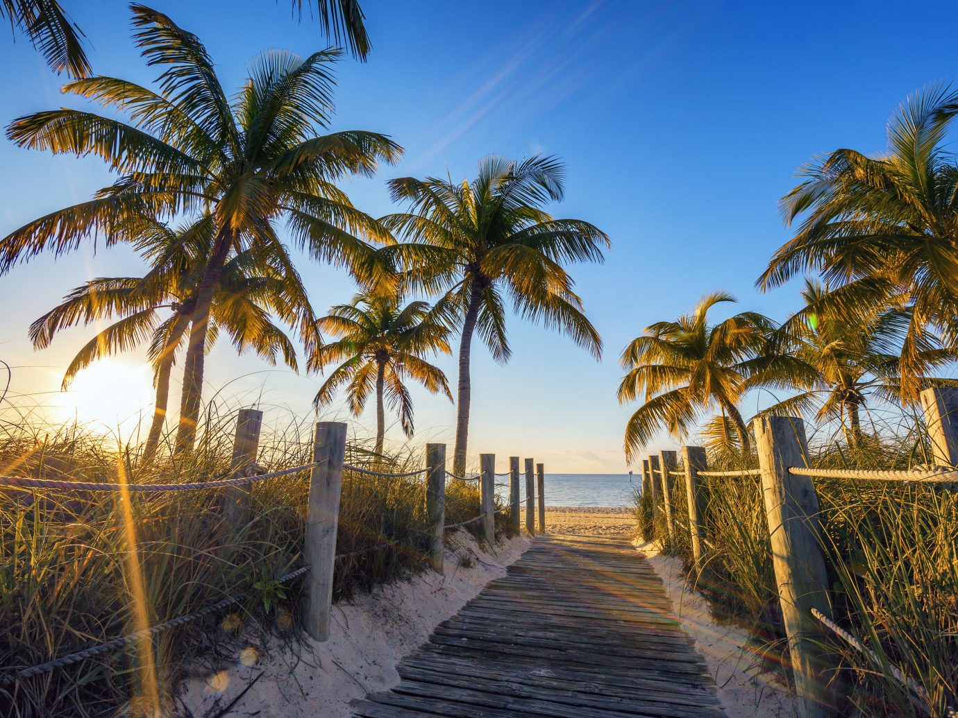 Trip Ideas tree outdoor palm sky grass Beach palm family body of water plant walkway Coast Ocean arecales woody plant Sea land plant vacation sunlight tropics Sunset flowering plant boardwalk area lined bushes sandy shade