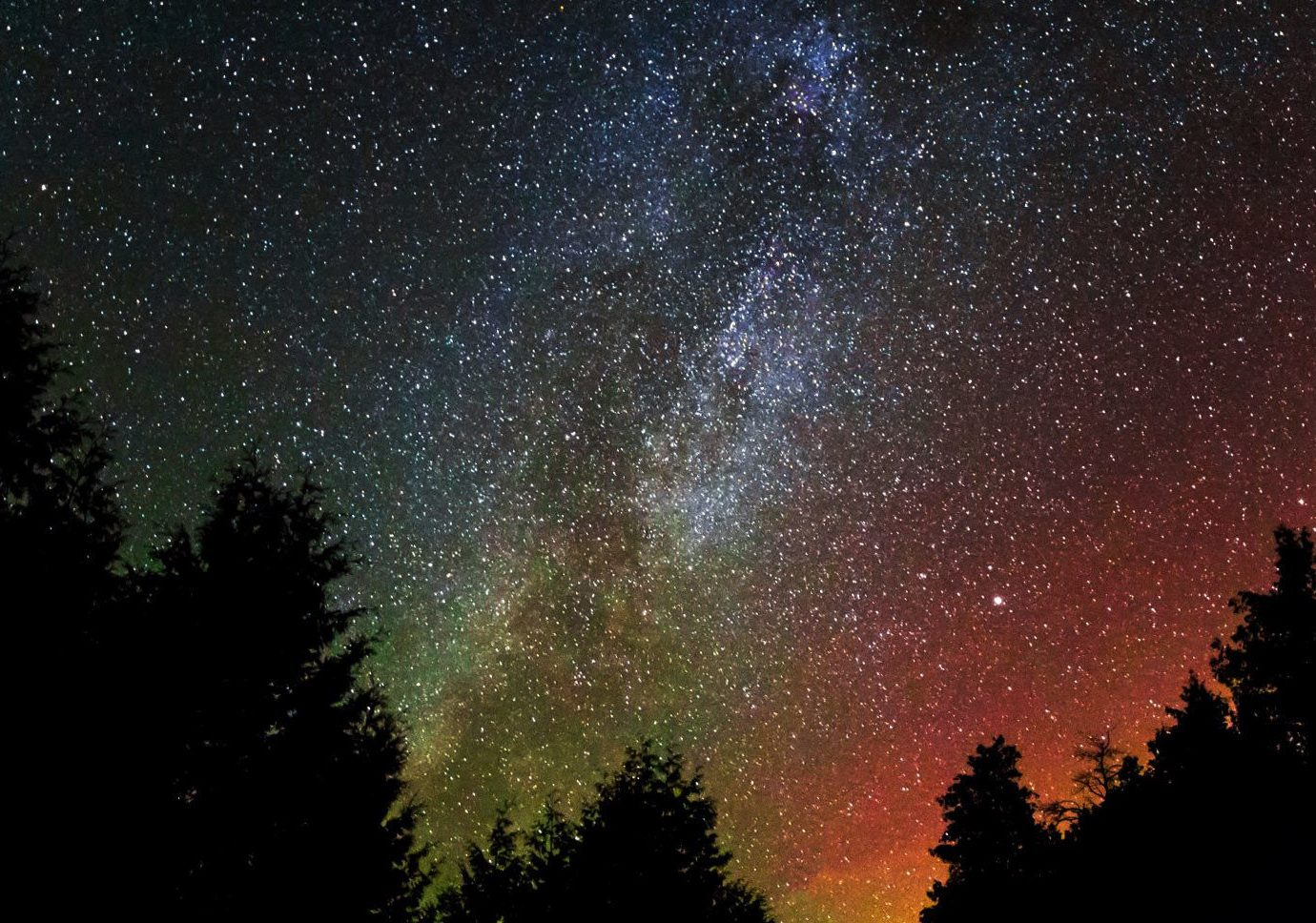 calm colorful isolation majestic Night Sky northern lights remote Scenic views serene silhouette sky star gazing stars trees Trip Ideas tree outdoor galaxy Nature astronomical object night Sunset astronomy atmosphere star spiral galaxy Sun milky way outer space light